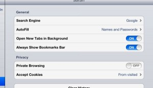 Safari for iPad settings