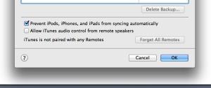 iTunes sync settings