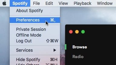 Spotify Preferences menu