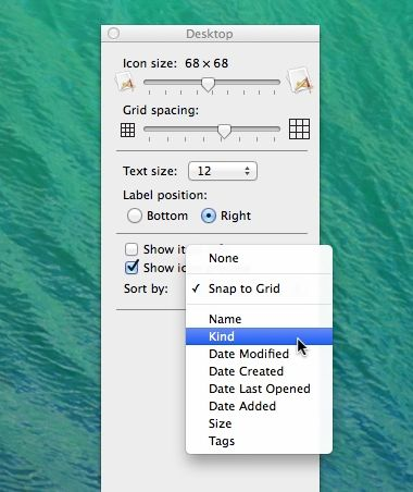 Mac Finder View Options window