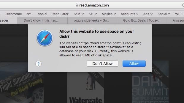 Allow Kindle Cloud Reader to use space on your disk
