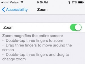 iOS Zoom setting