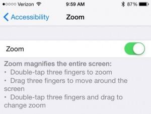 iOS Zoom setting