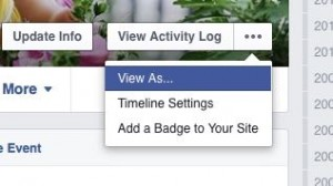 facebook public profile - Facebook view timeline setting